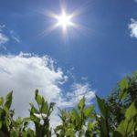Погода в Ірпені: чого очікувати цього тижня?